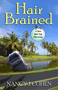 HAIR BRAINED ebook