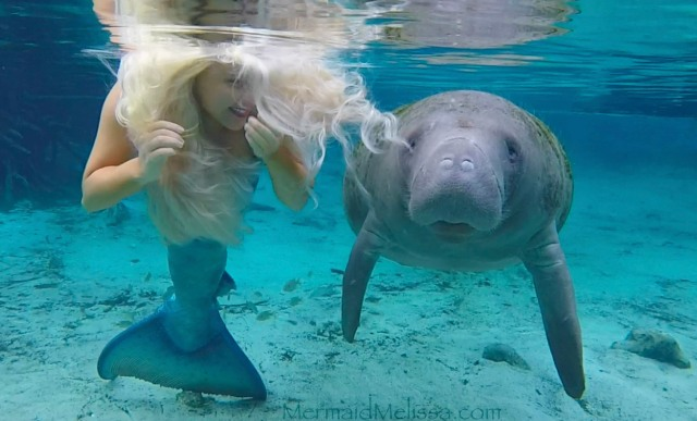 mermaid-melissa-manatee-smile-video